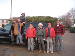 Big ole Tree selection