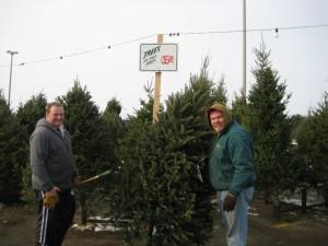 Tree Guys