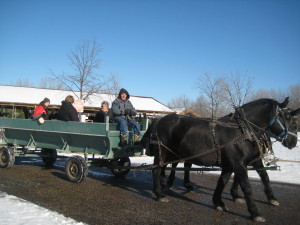 Richfield Christmas trees and hayrides