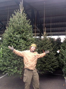 Best big christmas trees in the state