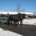 Horse Drawn Hayrides at some of our locations
