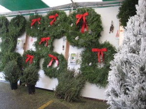 Variety of Wreath sizes