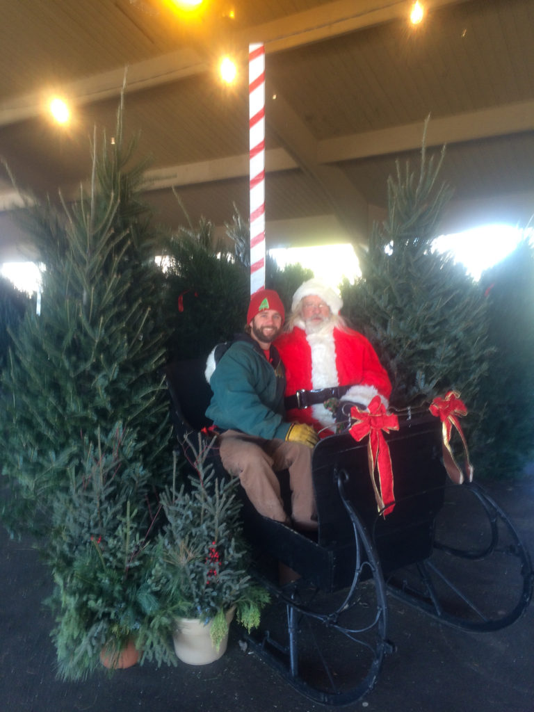 Colorado Christmas Tree Farms